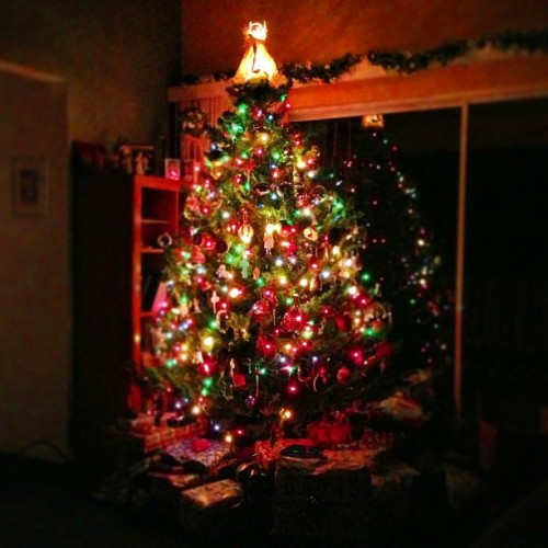 #Christmastree early morning #christmas