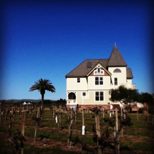 #vineyard#winery#norcal#house