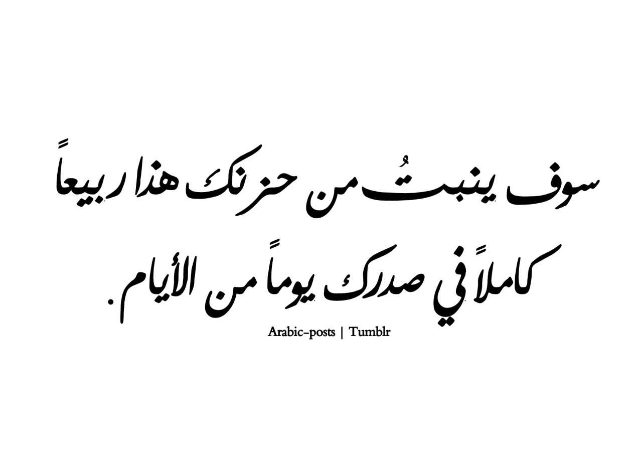 Quotes In Arabic Delectable Quotes إقتباسات