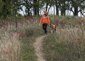 Hiking safety during hutning season #MNnature