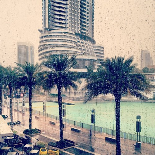 hollywouldchronicles:  A rare stormy day in Dubai. I love this weather, reminds me of good old Great Britain 😜👏❤☁⚡☔ #storm #dubai #uae #rain #raining #palmtrees #view #beautiful #cosy #thunder #lightening