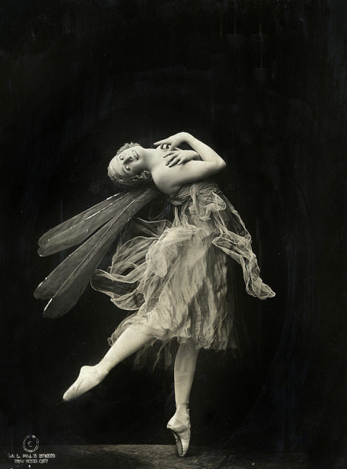 Anna Pavlova in 1914. Photo by Ira L. Hill.