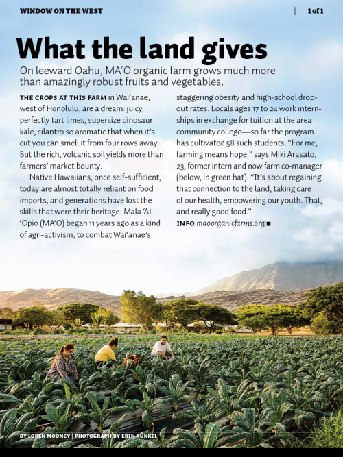 MA'O Organic Farm in this month's Sunset magazine. I love this place and admire all the great work they do. I'm working in Oahu again next month and can't wait to visit the farm.