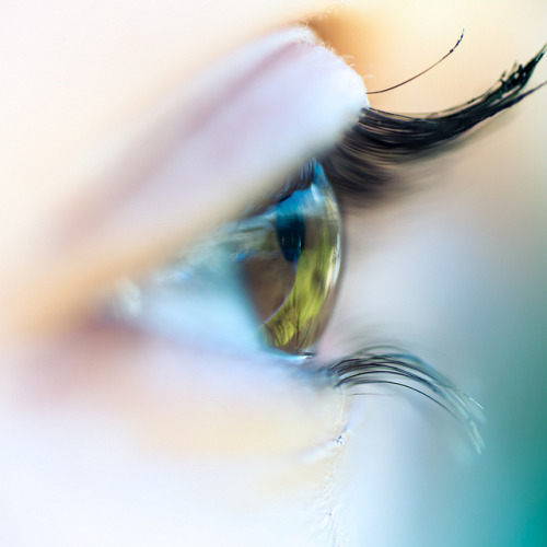 Via Flickr: Macro Eye