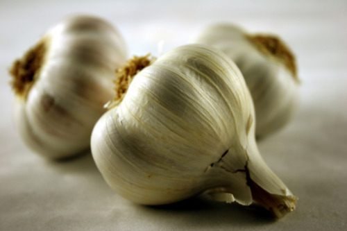 Flamous Fun Fact: Garlic is embraced by cultures around the world and incorporated in recipes for its aroma, taste, and nutritional benefits. We took this amazing vegetable and added it to our Flamous chips for great taste and health.
