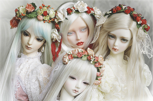 saskha:  Our ladies by AyuAna on Flickr.
