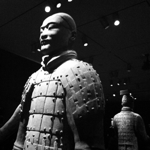 Wild and wonderful Terracotta warriors opening party @asianartmuseum (at Asian Art Museum)