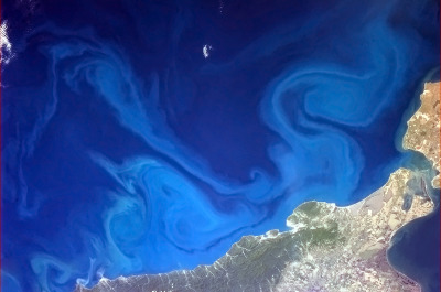colchrishadfield:  Dr. Seuss-inspired swirls in the Black Sea.