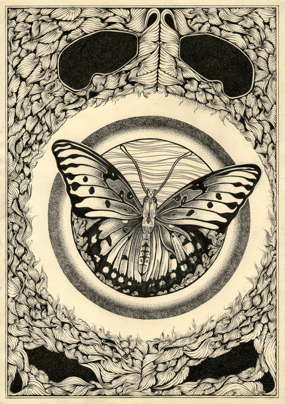 eatsleepdraw:  Just a butterfly