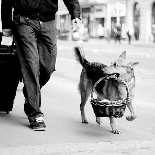 magicalnaturetour:  Fine Art Street Photography - Happy Easter! by michalfanta on Flickr.