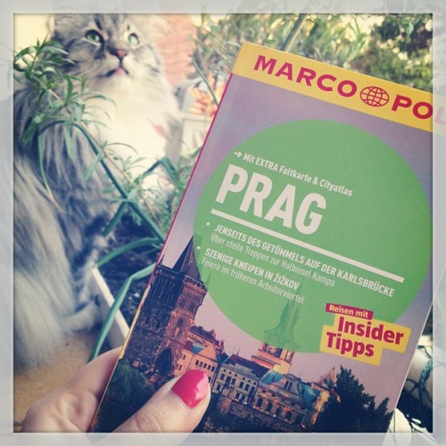 Planning a little summer trip to Prague 😊☀🌇 #trip #holiday #prague #summer