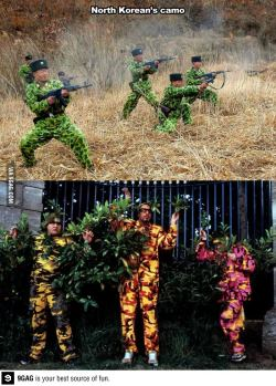 japilagan:  Camouflage, North Korean style