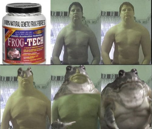 Frog-Tech Frogging Enhancer So turns out Animorphs were all born of steroids and performance enhancers…My trust is broken.