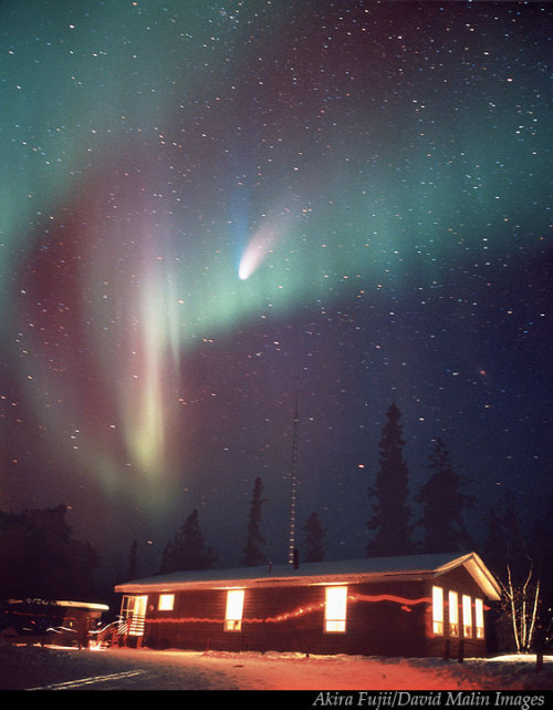 Aurora and the Comet      Comet Hale-Bopp and Aurora over a wooden house. — Akira Fujii