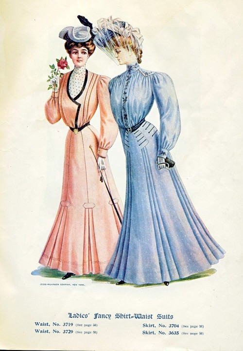 onceagarden:  New Idea May 1905