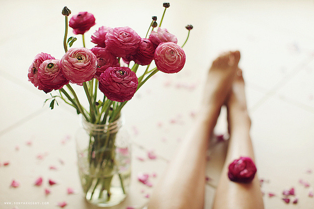 ranunculus by Sonya Khegay on Flickr.