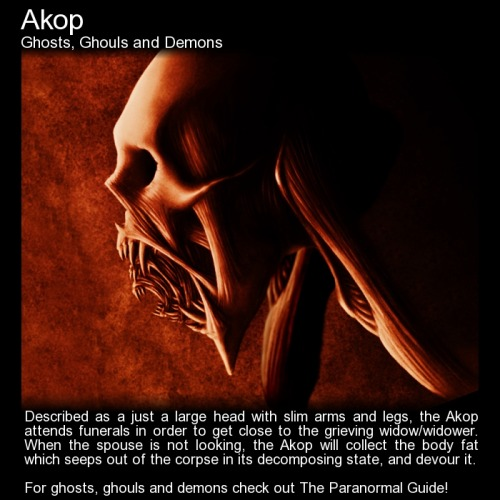 theparanormalguide:  Akop - Ghosts, Ghouls and Demons - Origin: Demonology in the PhilippinesDescription: An evil entity known to prey on widowed people.Philippine mythology does not have an organised pantheon and does not have a history. Demons are still a way of life for those who live in the rural areas of the Philippines, and all know to be wary of them.One such demon is the Akop. Described as a being with no torso, just a large head with slim arms and legs, the Akop attends funerals in order to get close to the grieving widow/widower. When the spouse is not looking and noone else is guarding the deceased, the Akop will collect the body fat which seeps out of the corpse in its decomposing state, pre burial, and devour it.The Akop does not normally work alone. It aligns itself with the Ibwa demon, another evil entity from the Philippine belief system. This demon devours the flesh of the dead and particularly likes the ears.Written by Nic Hume of APPI - APPI - Australian Paranormal Phenomenon InvestigatorsPut together by Ashley HallPicture: Not the Akop, no real pictures/illustrations could be found, but I can imagine this gorging on decaying fat… You can also follow The Paranormal Guide at:Tumblr. Website. Youtube. Twitter. Facebook. Google+. Newsletter.