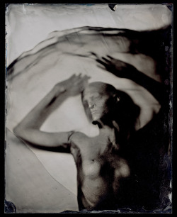melaniegaydos:  Photographer: James Weber at Collodion Gallerie.