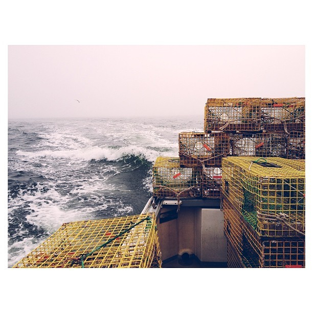 Setting in the #fog #lobstering #maine #penobscotbay #vsco #vscocam