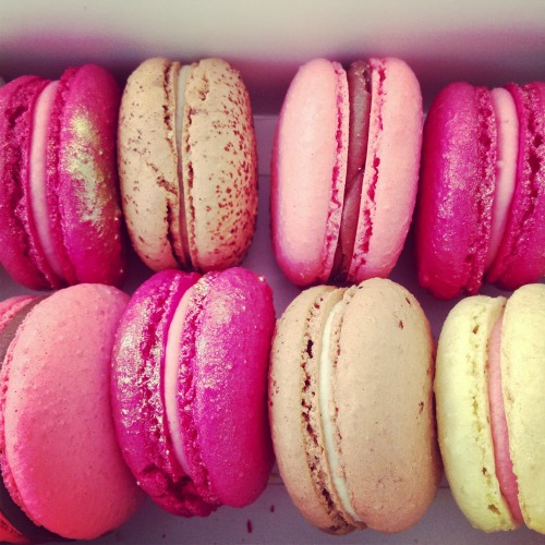 rose-wh0res:  lily-cats:  Got this amazing macarons this morning!  pink&bubbly