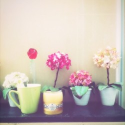 My #morning #cup of sense #flowers #vanilla #candle