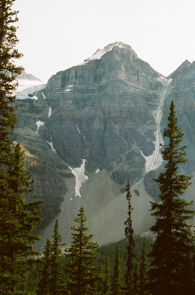 marisais:  moraine lake trail (by dandelion gum)
