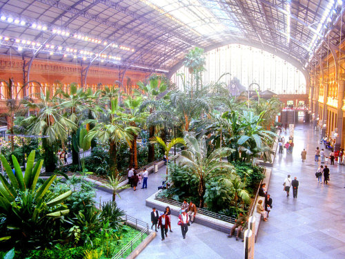 The World's Most Beautiful Train Stations | Atocha Station, Madrid