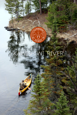 explore-everywhere:  sanborncanoecompany:  Scout: Kawishiwi River I uploaded my own Scout story about our recent trip to the Boundary Waters. Lots of pictures - take a look - http://www.sanborncanoe.com/blog/kawishiwi-river/  check it! the photos are amazing, i promise!