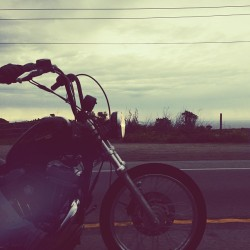 Cruising with @zakshelhamer #motorcycle #harley #sunset