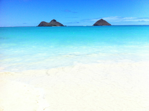 my favorite beach in hawaii, lani kai.