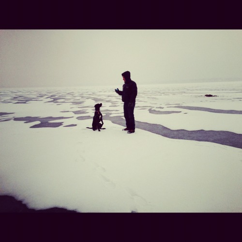 Playing fetch on a frozen Madison lake. (Now we've got a blizzard.)