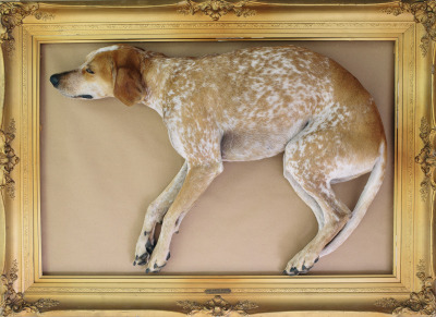 "maddieonthings:  Rare John Audubon oil painting of ""Redtick Coonhound"""