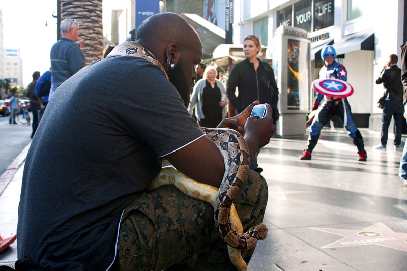 The Hollywood Blvd snake handler checks email between performances.