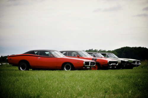 Terror squad Starring: Dodge Charger, Coronet and Plymouth GTX (by MoStuff Sthlm)