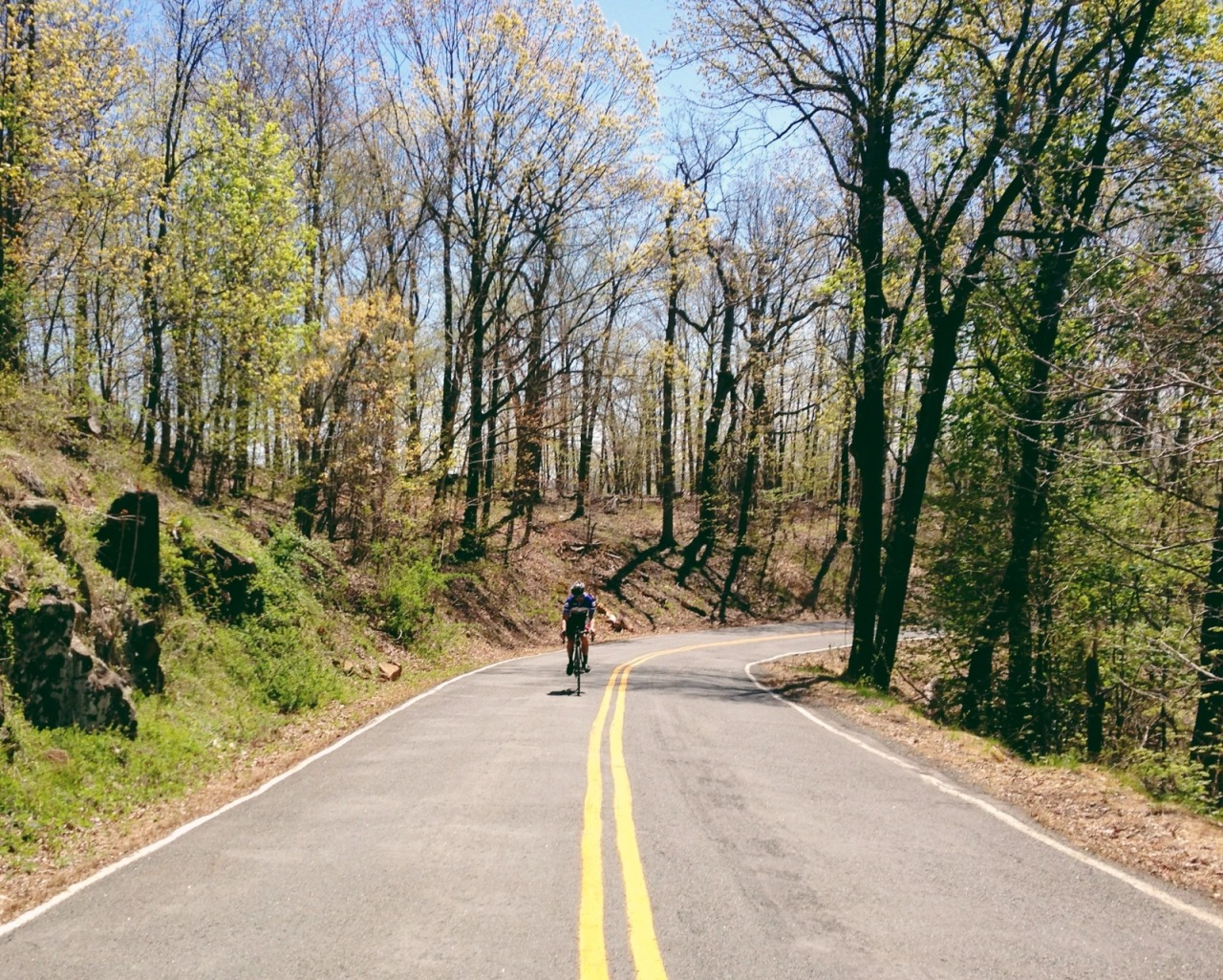 WEDNESDAY IS HILL DAYEarlier this week, we took the back roads to Nyack for the first time in a few months. Phil had a great day and destroyed all the big climbs of the day, not to mention pulling us the entire way home on 9W.