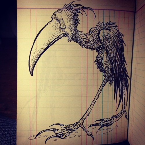 chrisriddellblog:  Bird .