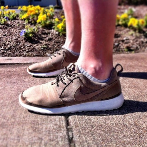 I'm pretty sure the Roshe Run is the perfect shoe for sunny days. Or any day. #nike #rosherun #premium #todayskicks #wdywt #sneakers #dotheseshoesmakemyfeetlooksupersmall? #sunnydaysandsneakers