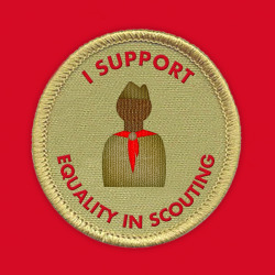 Stand up for equality in the Boy Scouts. Find out how you can help end the ban on gay scouts and leaders: http://glaad.org/scouts