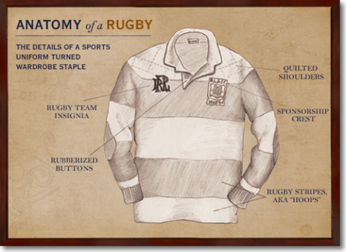 The Anatomy of a Rugby