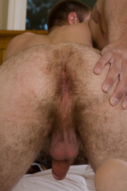ilickholes:  Holes-Something tasty to stick your dick into.