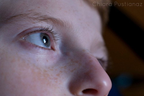 17/52 :: Eye on Flickr.