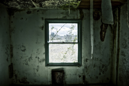"wbsloan:  My Windows Ache  ""so I wait for you like a lonely housetill you will see me again and live in me.Till then my windows ache."" ― Pablo Neruda, 100 Love Sonnets"