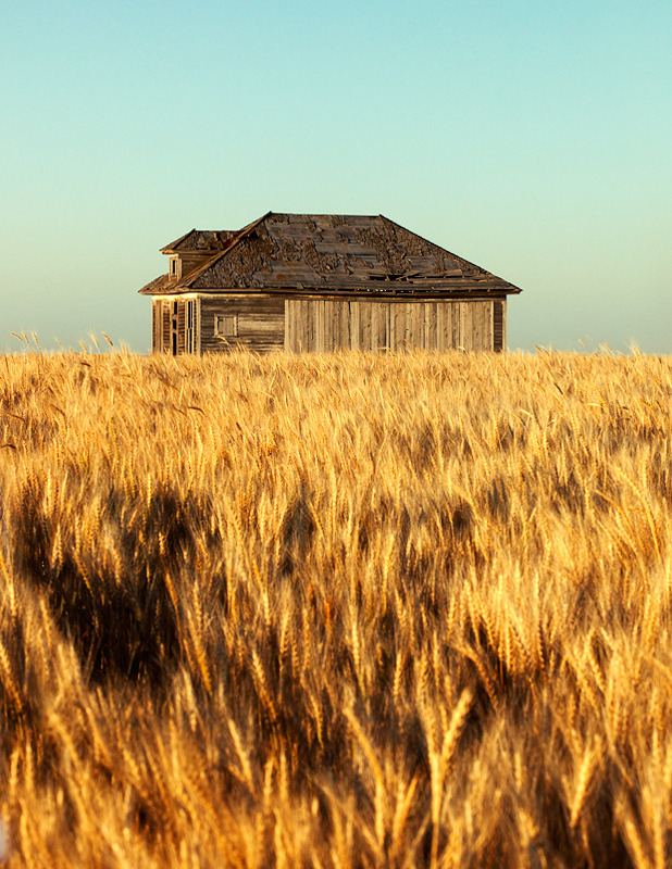 intothegreatunknown:  Old House on the Prairie