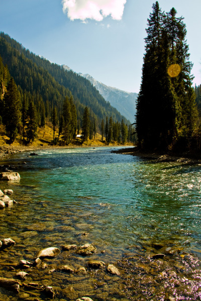 the-absolute-best-photography:  Taubut, Neelum Valley, Azad Jammu Kashmir, Pakistan by Black-Z-ro  You have to follow this blog, it's really awesome!  I seriously would love to have a summer home in a place like this. Screw the beach!!!