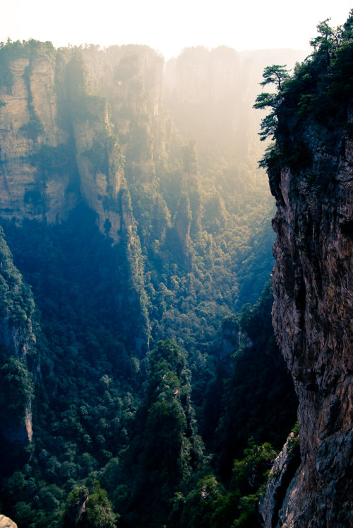 senerii:  Zhangjiajie, Hunan, China (By ⓨⓥⓔⓢ)