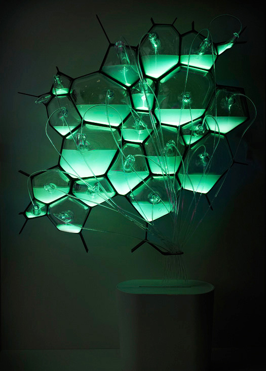"Here's A Light Fixture That Runs On Bacteria As we phase out incandescent lights for compact fluorescents, we save energy but take the risk of mercury pollution (there's heavy metals galore in CFLs). What if we could light our homes with biology? Similar to the Glowing Plant project from earlier this week, here's Philips concept for a microbial lamp powered by the chemistry of biological luminescence. It's part of Philips' ""Microbial Home"" future concept, which also includes urban beehives and bacterial waste recycling. You can get off the grid, and onto the petri dish. (via Co.Design)"