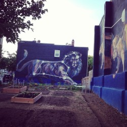 pattista:  Awesome new murals in station north! #baltimore