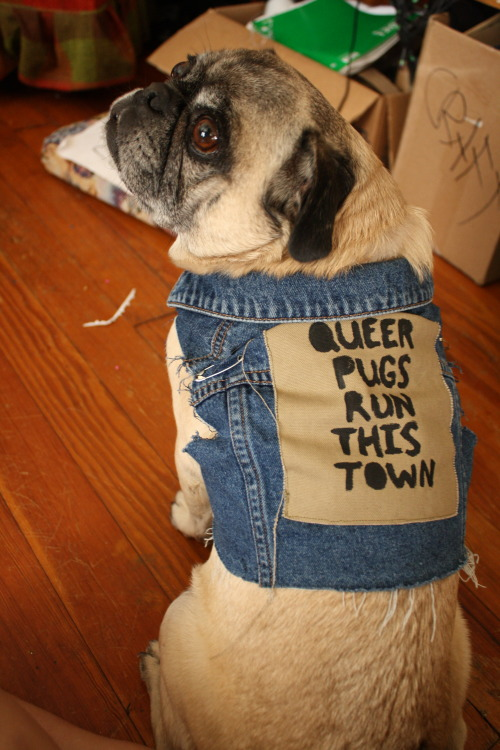 endonendonend:  rideforruin:  gross-femme:  Kate made Cheech this perfect vest and backpatch for my birthday and it is actually the most perfect thing  @my fav  ATTTN Saddogs: this is your shit right here.  TOTALLYPLEASEDDOGS