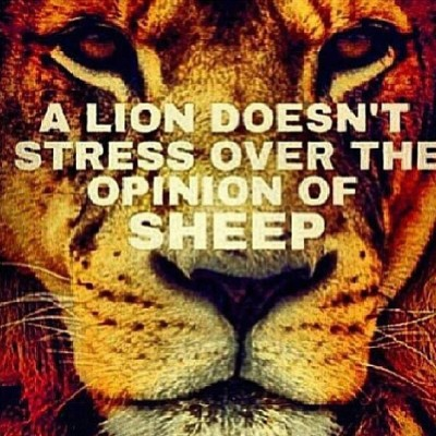 k-raw-the-ruler:  #truth #alwaysalion #lion #sheep