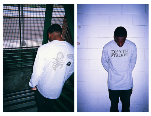 premiumdivision:  Death Stalker Long Sleeve (Heather Grey) Available on Friday 4/19 @ 12 PM Noon PST. http://shop.premiumdivision.com
